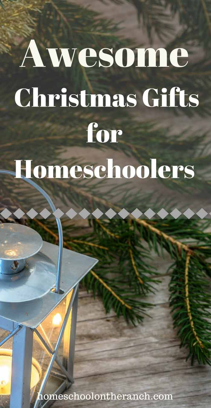 Awesome Christmas Gifts for Homeschoolers The Whole Family Will Love -